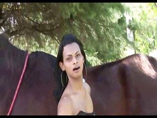 Girls Trans Horse (part 1)