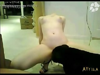 1583 Amateur Webcam Couple Dog Fuck (part 2)