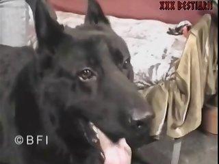 犬嗅ぎ美魔女3 パブロフの潮吹き犬編 ③熟女の潮吹き編